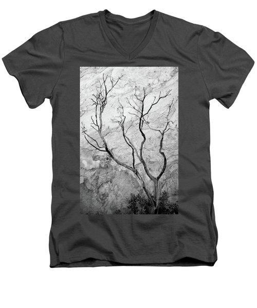 Wildfire Manzanita Men's V-Neck T-Shirt