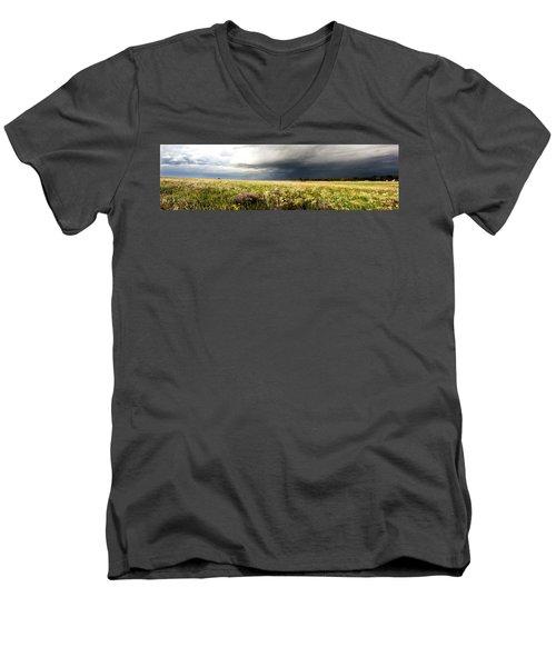 Wildflower Panorama 2008 Men's V-Neck T-Shirt