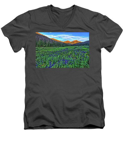 Men's V-Neck T-Shirt featuring the photograph Wildflower Park by Scott Mahon