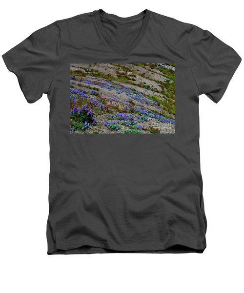 Wildflowers Men's V-Neck T-Shirt by Ansel Price