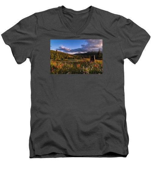 Wildflowers In The Evening Sun Men's V-Neck T-Shirt