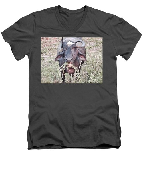 Wilds Of Buffalo Men's V-Neck T-Shirt