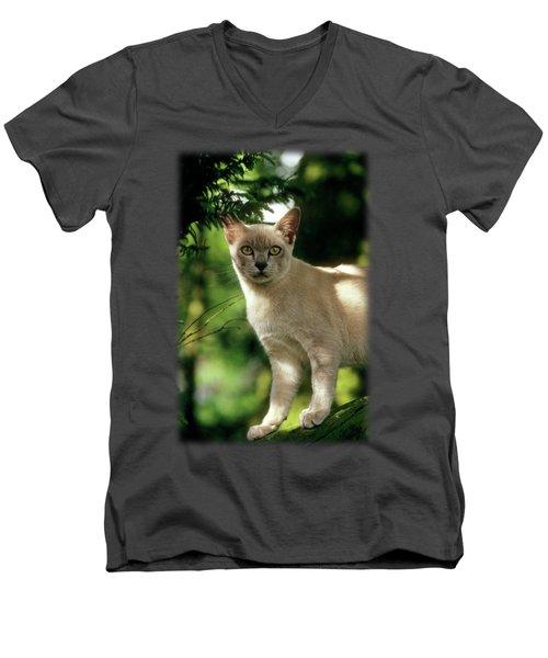 Wilham Men's V-Neck T-Shirt by Jon Delorme