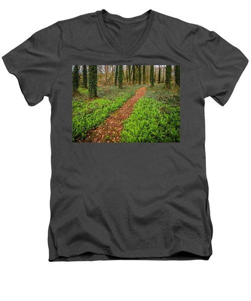 William Butler Yeats Woods Of Coole Park Men's V-Neck T-Shirt