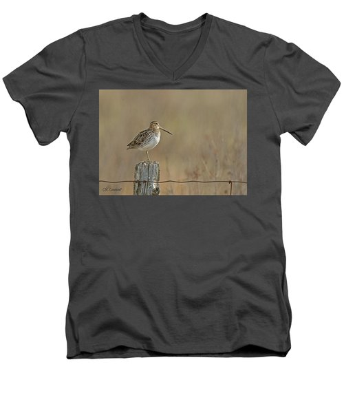 Wilson's Snipe On A Post Men's V-Neck T-Shirt by CR Courson