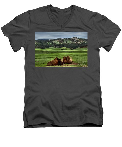 Wind Cave Bison Men's V-Neck T-Shirt