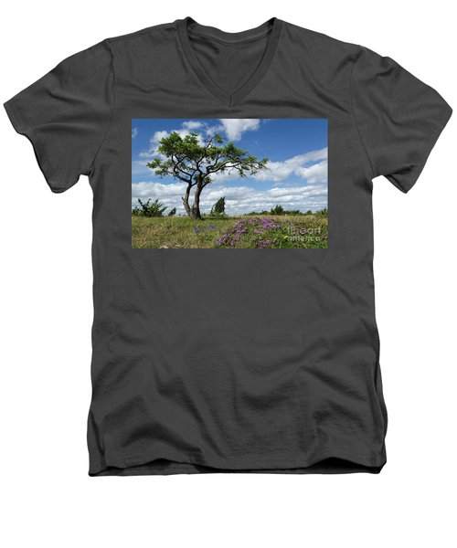 Windblown Men's V-Neck T-Shirt