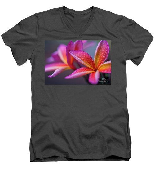 Men's V-Neck T-Shirt featuring the photograph Windows Into Nature by Sharon Mau