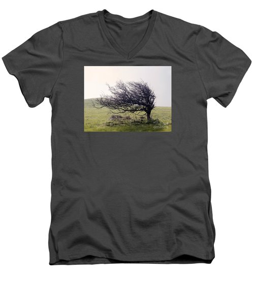Windswept Tree Men's V-Neck T-Shirt
