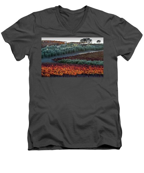 Wine Grapes And Olive Trees Men's V-Neck T-Shirt by Roger Mullenhour