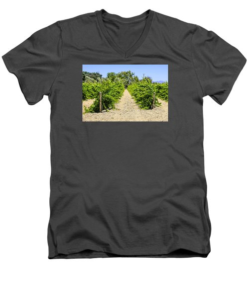 Wine On The Vine Men's V-Neck T-Shirt by Chris Smith