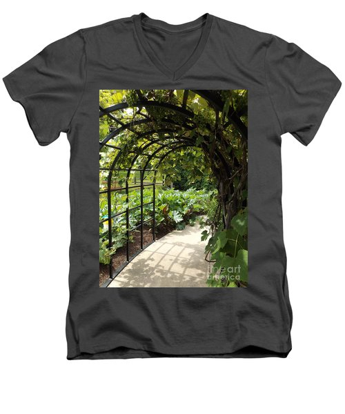 Wine Walk Men's V-Neck T-Shirt