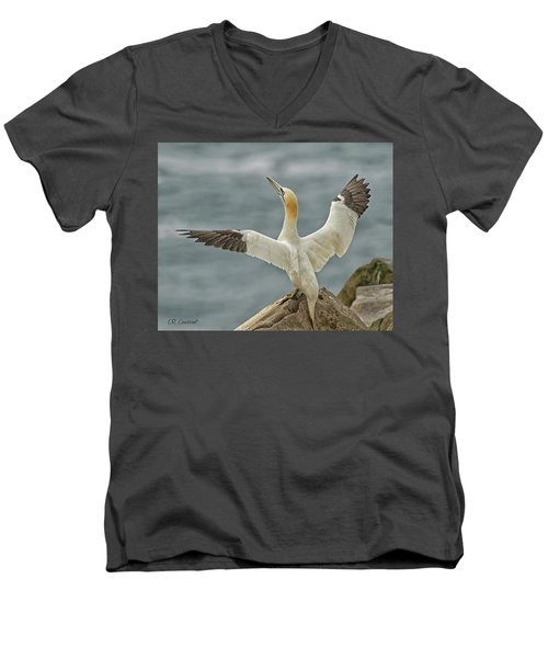 Wing Flap Men's V-Neck T-Shirt by CR Courson