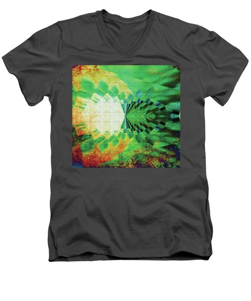 Winged Migration Men's V-Neck T-Shirt by Paula Ayers