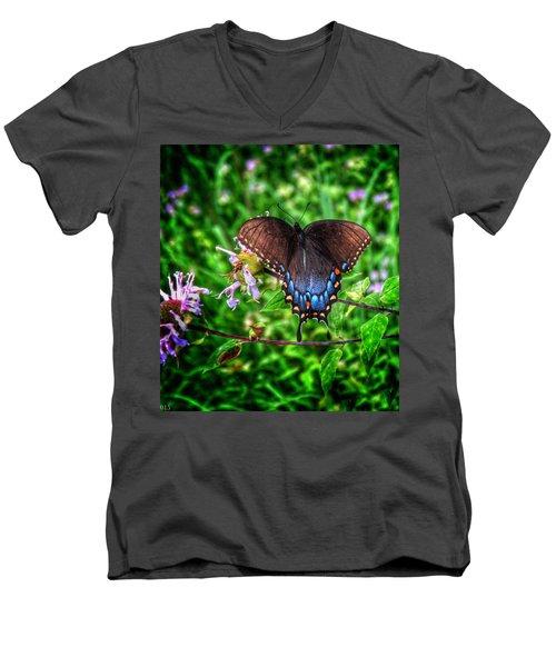 Wings Of Fancy Men's V-Neck T-Shirt