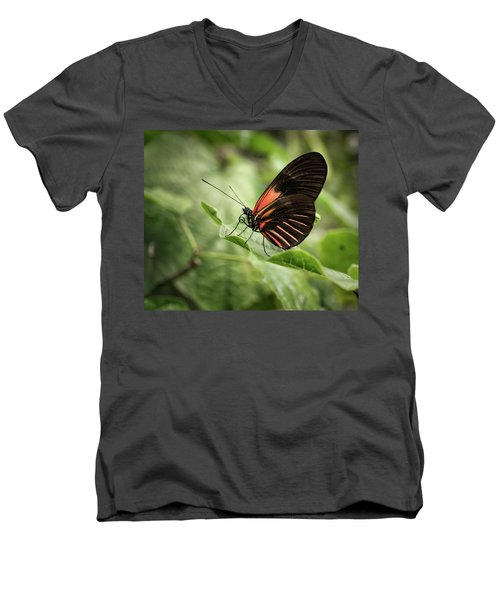 Wings Of The Tropics Butterfly Men's V-Neck T-Shirt