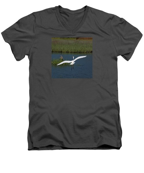 Wingspan Men's V-Neck T-Shirt