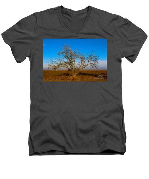 Winter Apple Tree Men's V-Neck T-Shirt