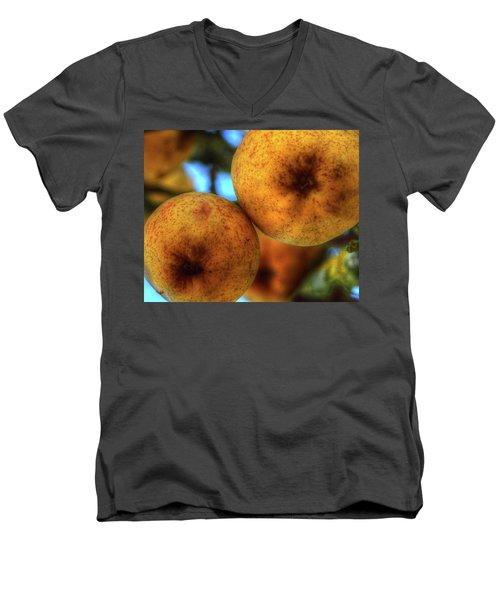 Winter Apples 2 Men's V-Neck T-Shirt