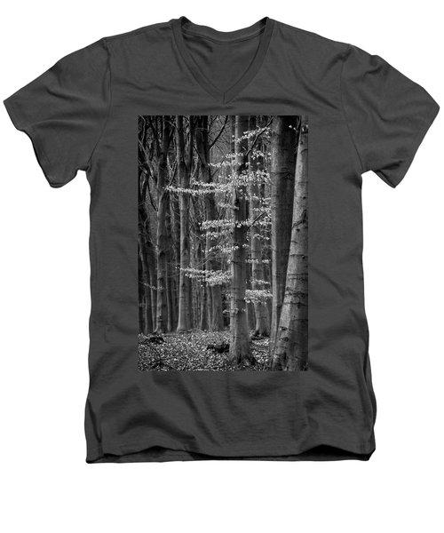 Winter Beech Men's V-Neck T-Shirt