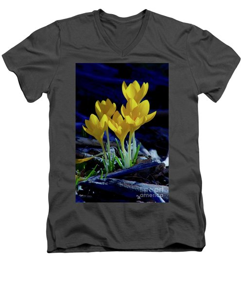 Winter Bloom Men's V-Neck T-Shirt
