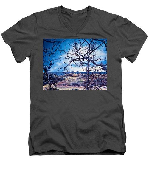 Winter Branches Men's V-Neck T-Shirt