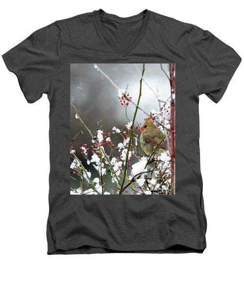 Winter Cardinal Men's V-Neck T-Shirt by Gary Wightman
