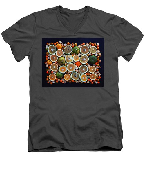 Winter Citrus Mosaic Men's V-Neck T-Shirt