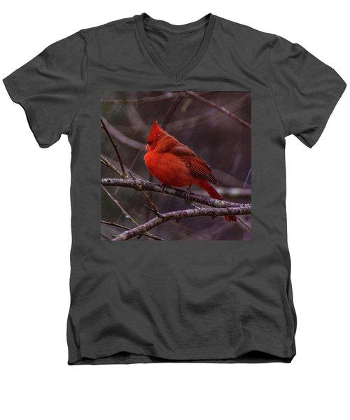 Winter Crimson  Men's V-Neck T-Shirt