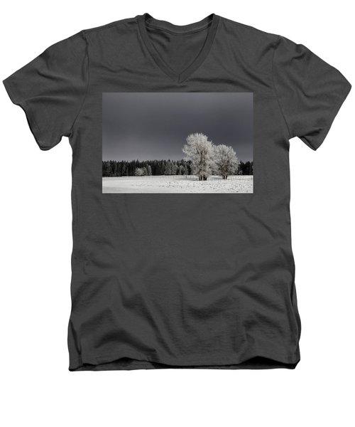 Winter Dreamscape Men's V-Neck T-Shirt