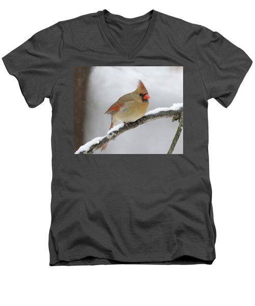 Winter Female Cardinal Men's V-Neck T-Shirt