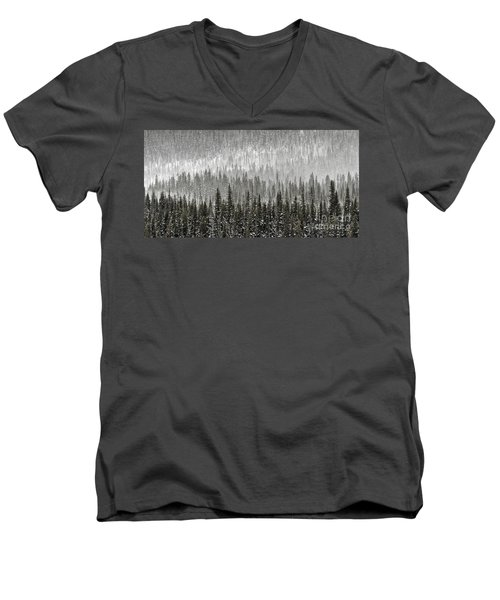Winter Forest Men's V-Neck T-Shirt by Brad Allen Fine Art