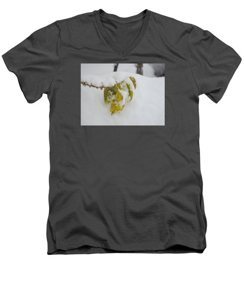 Winter Leaves Men's V-Neck T-Shirt by Deborah Smolinske
