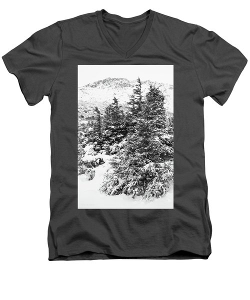 Winter Night Forest M Men's V-Neck T-Shirt
