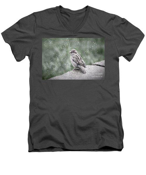 Winter Sparrow Men's V-Neck T-Shirt