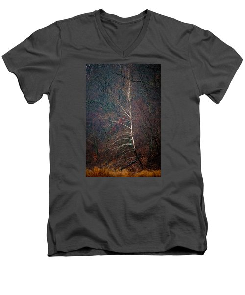 Winter Sycamore Men's V-Neck T-Shirt