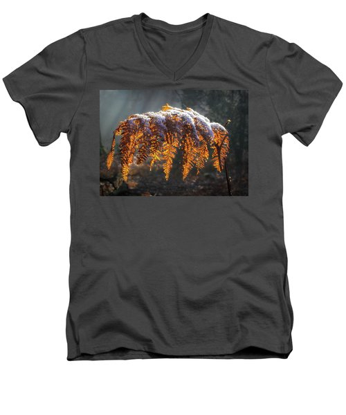 Winter Woods Men's V-Neck T-Shirt by Shirley Mitchell