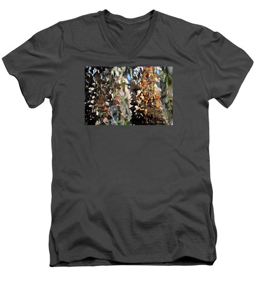 Wintering In Santa Cruz Men's V-Neck T-Shirt