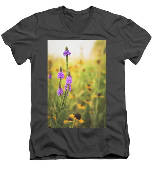 Wisconsin In July Men's V-Neck T-Shirt