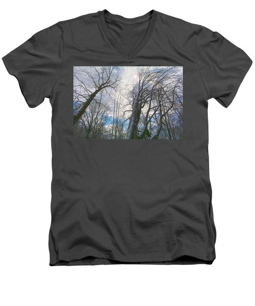 Wisdom Of The Trees Men's V-Neck T-Shirt by Angelo Marcialis
