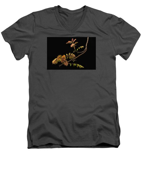 Wisteria Colors Men's V-Neck T-Shirt