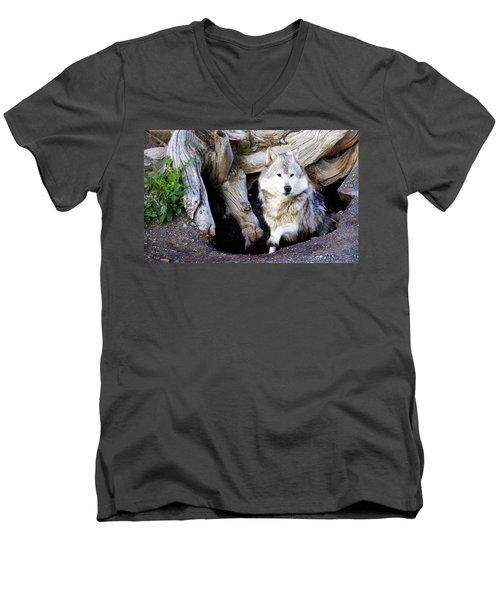 Wolf Den 1 Men's V-Neck T-Shirt