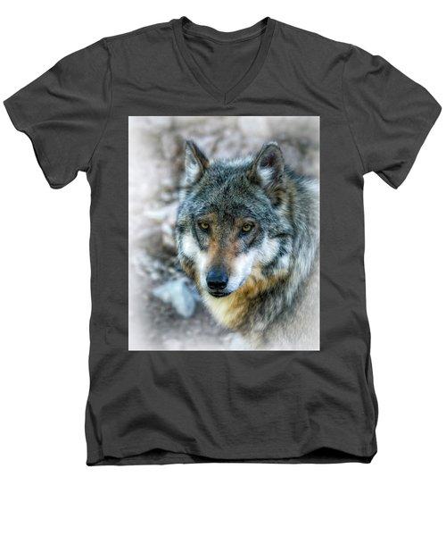 Wolf Gaze Men's V-Neck T-Shirt by Elaine Malott