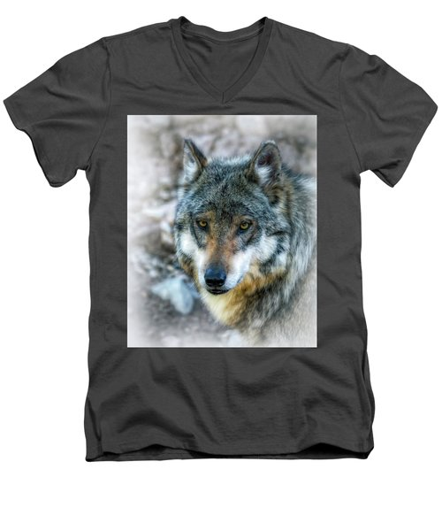 Wolf Gaze Men's V-Neck T-Shirt