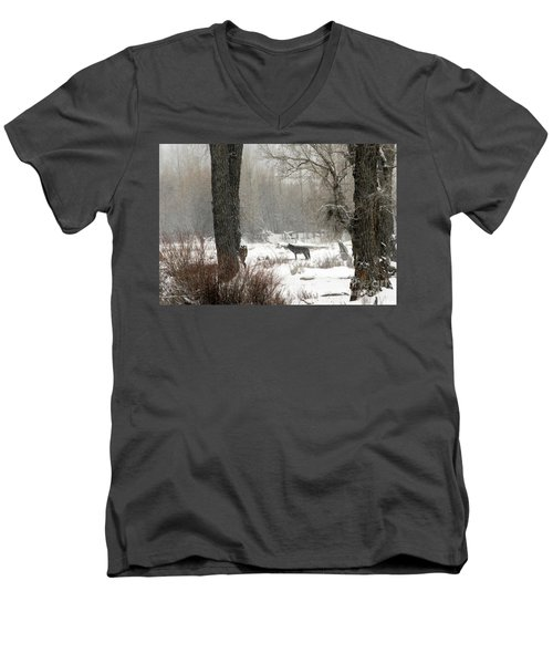 Wolf In The Forest Men's V-Neck T-Shirt