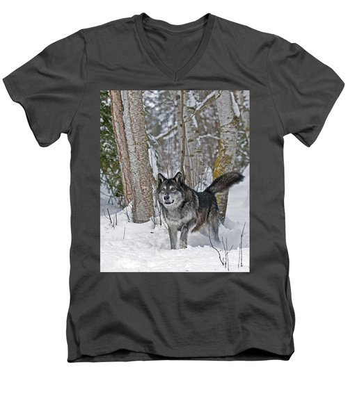 Wolf In Trees Men's V-Neck T-Shirt