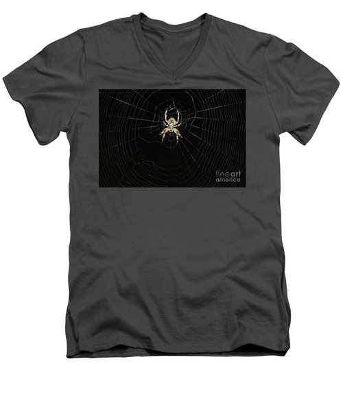 Men's V-Neck T-Shirt featuring the photograph Wolf Spider And Web by Mark McReynolds