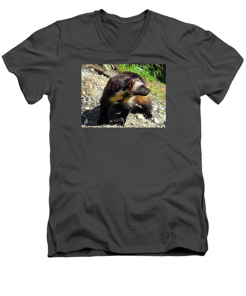 Men's V-Neck T-Shirt featuring the photograph Wolverine Wilderness by Kathy Kelly