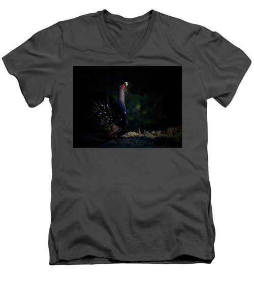 Men's V-Neck T-Shirt featuring the photograph Wood Grouse's Sunbeam by Torbjorn Swenelius