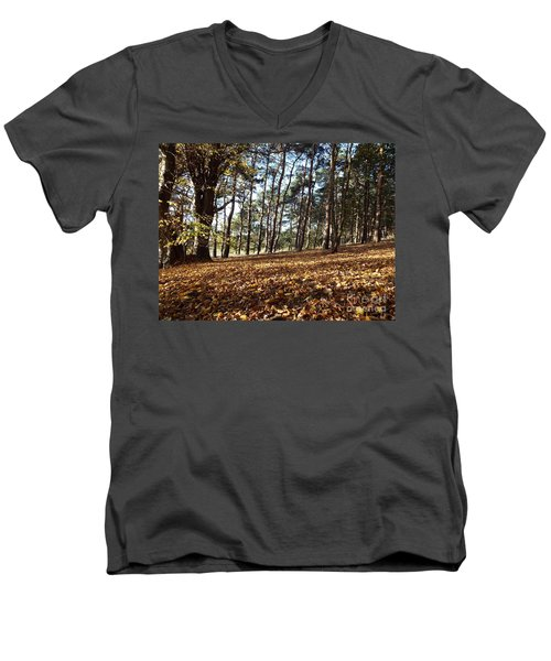 Woodland Carpet Men's V-Neck T-Shirt